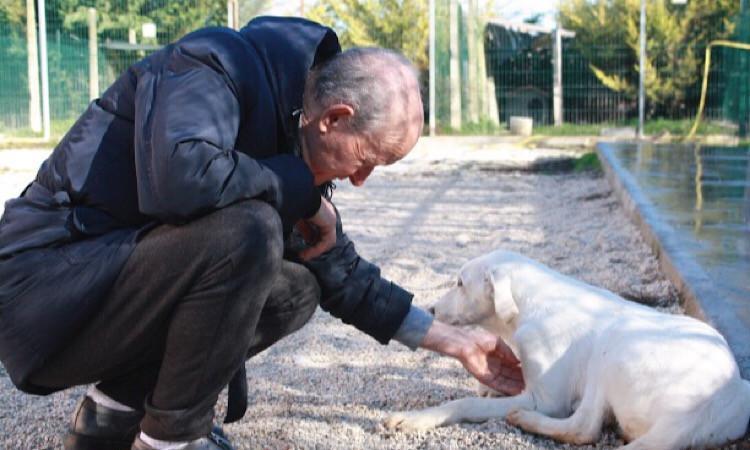 Pettherapyal canile di Civitanova Marche con i ragazzidell'Anffas