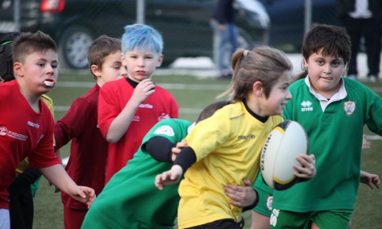 """Rugby Macerata, fine settimana con """"luci e ombre"""""""