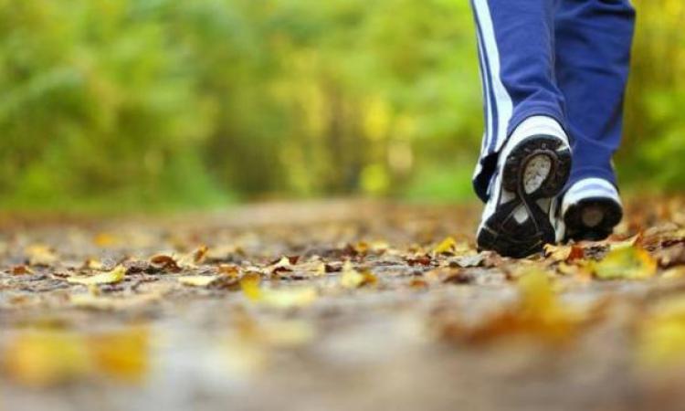 """Macerata, riparte """"Camminando"""" a spasso con la cultura"""