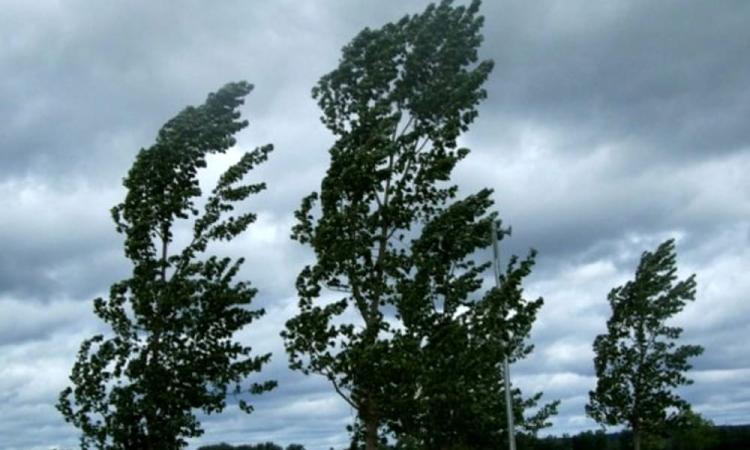 Protezione Civile delle Marche, allerta meteo per lunedì 6: vento forte e burrasca lungo la fascia costiera