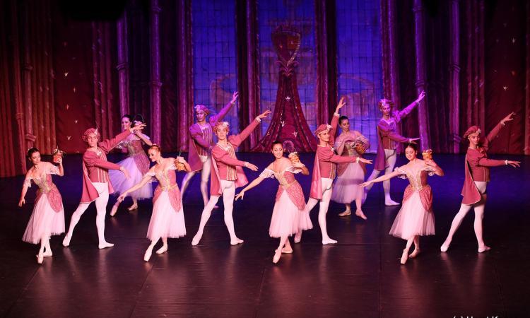 """Civitanova, venerdì 11 gennaio al teatro Rossini va in scena """"il lago dei cigni"""""""