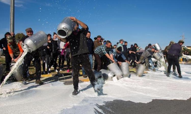 La protesta del latte arriva nel Fermano: nel pomeriggio gli allevatori sardi saranno lungo la Mezzina