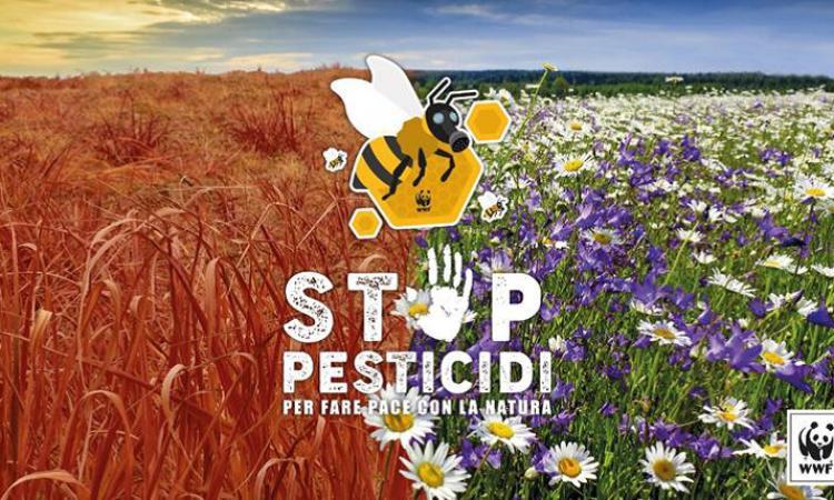 """Il 14 aprile a Porto Potenza Flash Mob """"Stop pesticidi"""" organizzato dal WWF"""