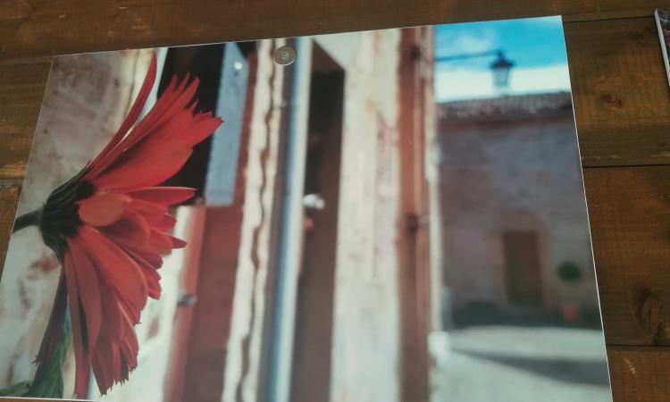 """Aperta la mostra """"Scatta la Primavera"""" al Giardino delle Farfalle di Cessapalombo"""