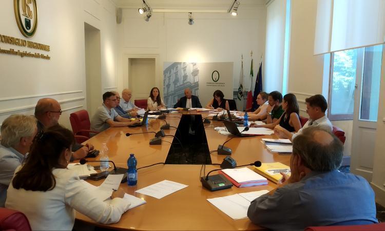 Regione, piano sociosanitario 2019-2021: riprende l'esame in commissione