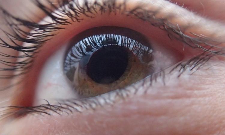 """A Matelica il convegno """"il Glaucoma nella Terra del Terremoto"""""""