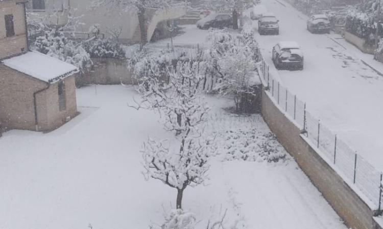 Neve a fine marzo: la provincia di Macerata si sveglia imbiancata
