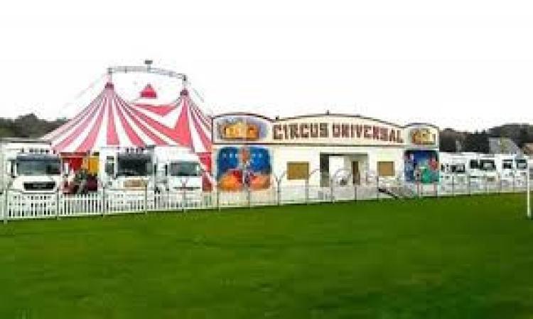 Animali affamati al circo, arriva l'aiuto di Coldiretti