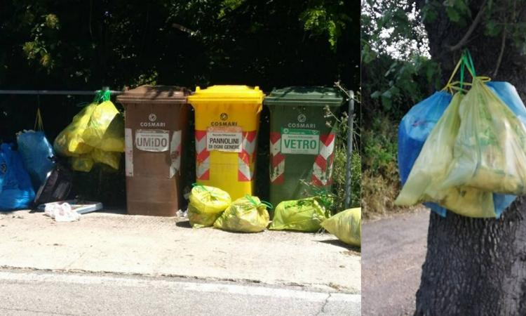 """Mogliano, abbandono dei rifiuti fuori dai cassonetti: """"Telecamere mobili per scovare i furbetti"""" (FOTO)"""