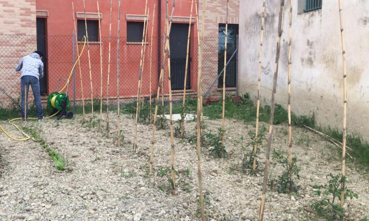 """Loro Piceno, al centro """"Monti Azzurri"""" la terapia dell'orto come beneficio e rinascita"""