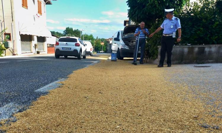 San Severino, camion perde carico di orzo: gli abitanti puliscono la strada