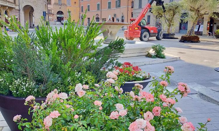 San Severino, Piazza del Popolo diventa un grande giardino all'aperto: il mercato trasloca sino a settembre
