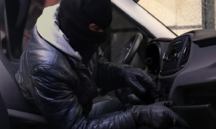 Macerata: Topi d'auto ancora in azione