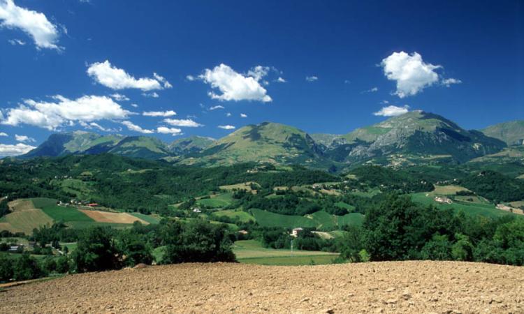 Parco dei Monti Sibillini,  emanati due bandi a sostegno degli agricoltori: scadenza il 6 ottobre