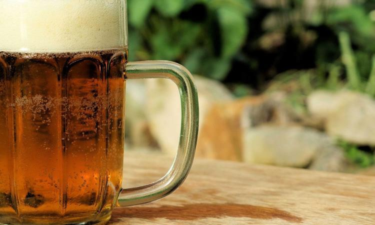 """""""La botanica della birra"""": doppia presentazione del libro a Camerino e Muccia"""