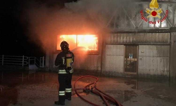 Paura ad Appignano, 3 capannoni in fiamme nella notte: Vigili del Fuoco al lavoro (VIDEO e FOTO)