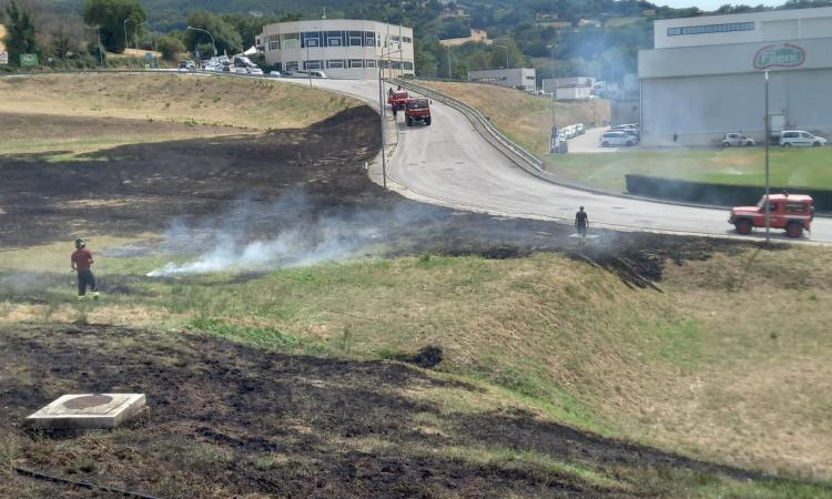 Cingoli, incendio nella zona industriale a due passi dallo stabilimento Fileni (FOTO)