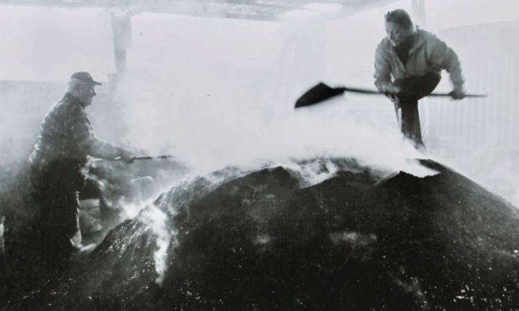 Cessapalombo, Fernando Maurizi ci racconta la tradizione carbonaia in via di estinzione (FOTO)